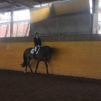 900_concorso natale 2012 148